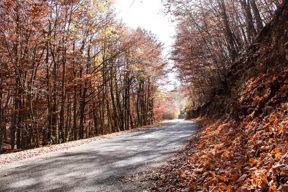 autunno meraviglioso